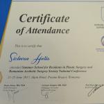 certificate-28