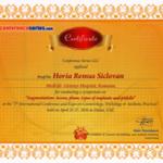certificate-32